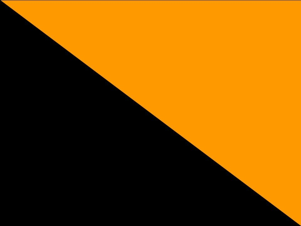 Svart / Orange