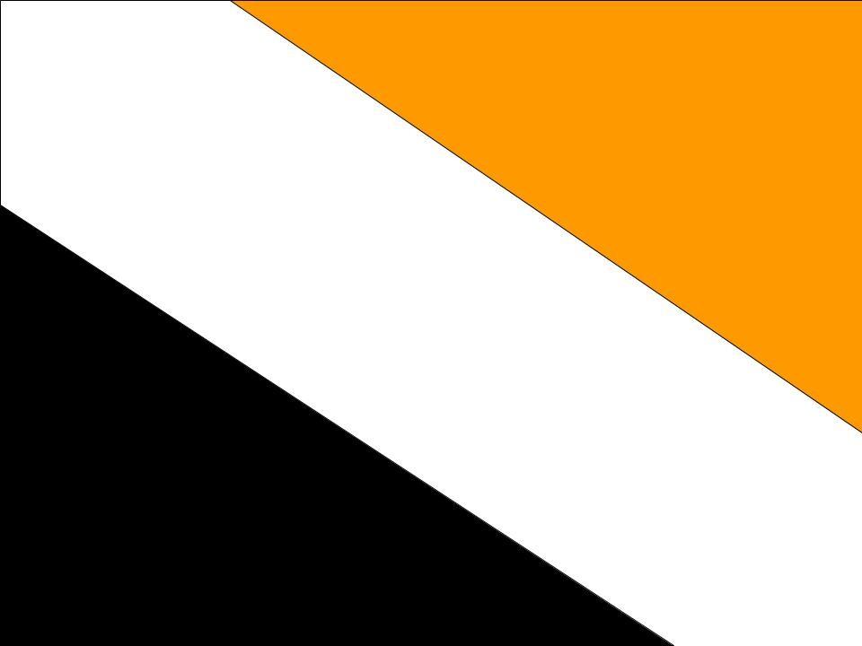 Svart/Vit/Orange