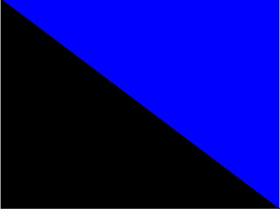 Svart/Blå